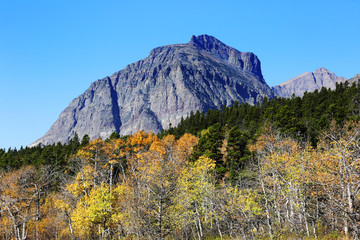 Wall Mural - Mountain and Fall Colors
