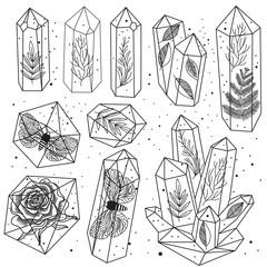 Wall Mural - Gems, crystals line art vector