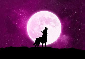 Konzept Wolf, Werwolf vor dem Mond bei Nacht