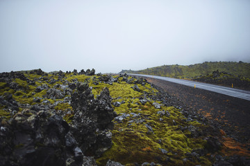 Stones with Moss and Road