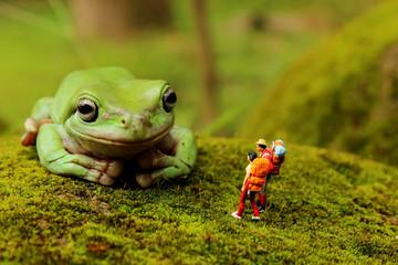 Zelfklevend Fotobehang Kikker meet frog