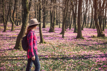 Tender woman woman walking among beautiful landscape with purple carpet of blossoming crocus flowers in the spring forest. Freedom and wanderlust travel concept