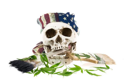 Skull and Marijuana  leaf isolated on white background