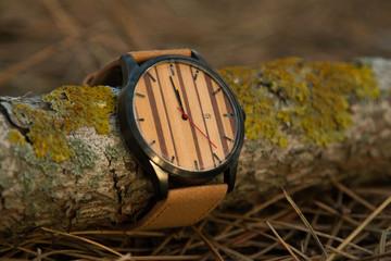 часы на ветке