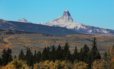 Wall Mural - Pumpelly Piller in Glacier National Park with Fall Colors