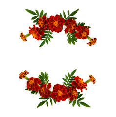 Frame of marigold (Tagetes) flowers with leaves on a white background with space for text. Top view, flat lay