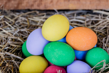 colorfull easter eggs on brown grass