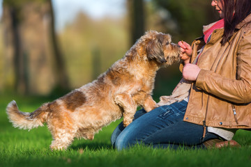 young woman giving her dog a treat