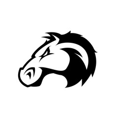 Furious horse head sport club mono vector logo concept isolated on white background. Modern professional team badge design.