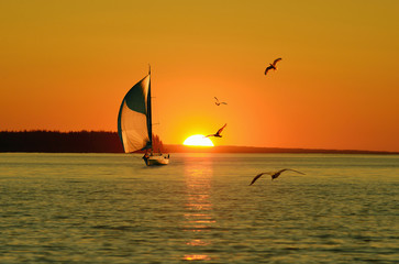 Sailing yacht against the setting Golden sun and flying seagulls.