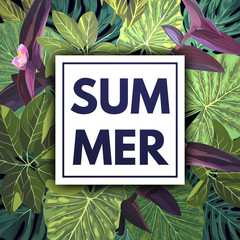 Summer green tropical flyer design with palm tree leaves and purple flowers.