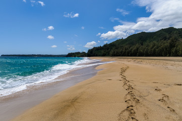 Sandy Beach in Hawaii