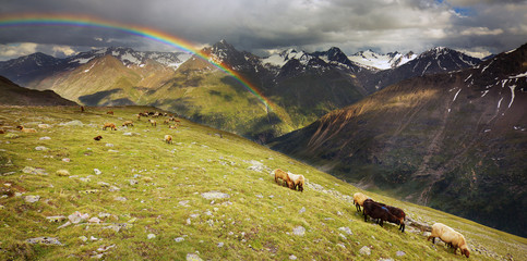 Rainbow in Ötztal Alps