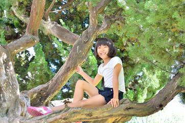 木登りを楽しむ女の子