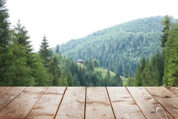 Photo sur Aluminium Colline Green forest hills