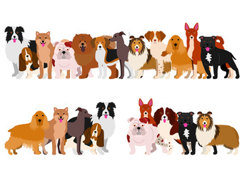 Border of medium dogs set