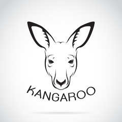 Vector of a kangaroo head on white background. Wild Animals.