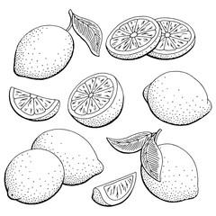 Lemon fruit graphic black white isolated sketch illustration vector