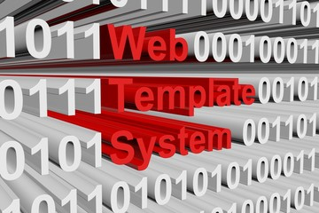 Web template system in the form of binary code, 3D illustration