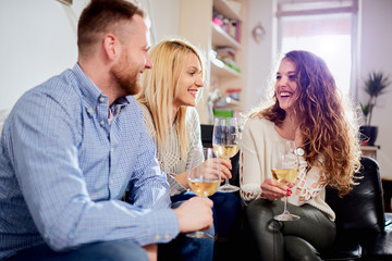 Friends talking, drinking vine, toasting while sitting on sofa in living room