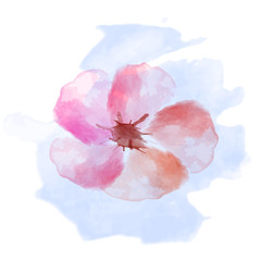 Beautiful flowers watercolor illustration for Mother's Day, wedding, birthday, Easter, Valentine's Day. Spring or Summer composition.