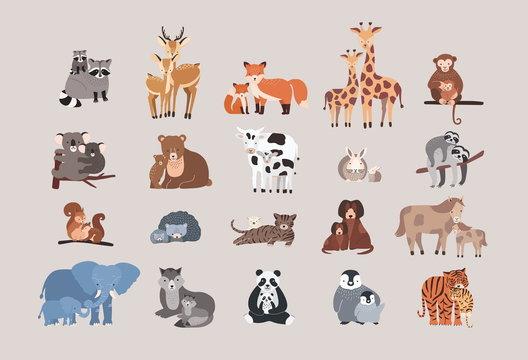 cute animals with babies set. raccoon, deer, fox, giraffe, monke