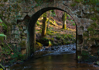Sunlit woods viewed through the arch of an old stone bridge over a stream.