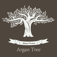 Argan plant or Argania flora fruit tree