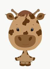 funny giraffe boy