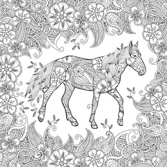 Coloring page in zentangle inspired style. Running horse on flowering meadow.