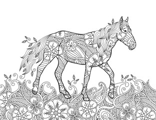 Coloring page in zentangle inspired doodle style. Running horse on flowering meadow.
