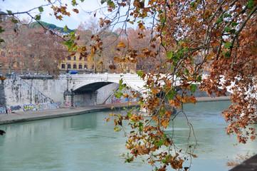 Tiber River, Rome Italy