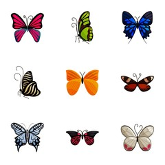 Colorful butterflies icons set, cartoon style