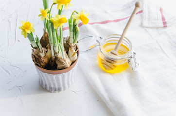 Top view honey, drizzlier, kitchen towel, yellow daffodils bouquet in pot for spring breakfast on white table background. Healthy food, Diet, Detox. Copy space.