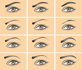 a set of different types of eyes.