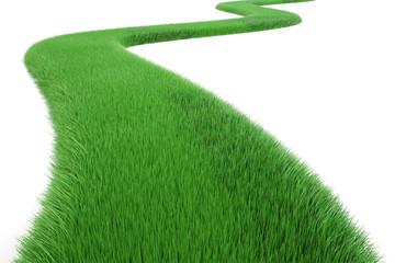 Green Grass Way, 3D rendering