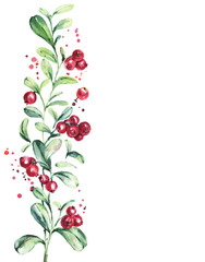 Cranberry background. Beautiful invitation card with wild berries branches. Isolated greeting design