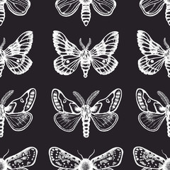 Seamless pattern with moths in retro style. Insects on a dark background. Dotwork. Hand drawn.