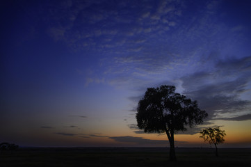 Africa, sunset, savannah, Marra Masa, big sky, dramatic clouds, clouds