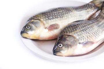 Fresh carp on a plate