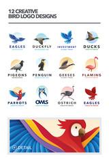 12 Creative Bird Logo Designs Vector