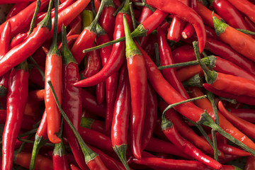Canvas Prints Hot chili peppers Raw Organic Red Thai Peppers