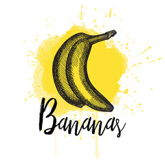 Vector illustration of a banana in hand drawn graphics depicted on a yellow background