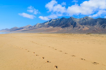 Footprints in sand on Cofete beach in secluded part of Fuerteventura, Canary Islands, Spain
