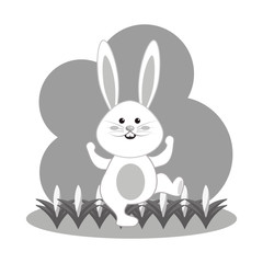 grayscale nice and funny rabbit dancing