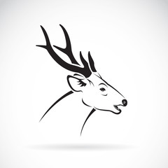 Vector of a deer head on a white background. Wild Animals Logo.