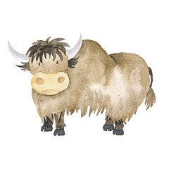 Yak Watercolor Brown Hand-Painted Isolated