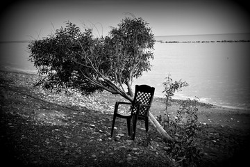 A black chair by a tree