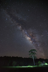 Milky Way and silhouette of tree at Phu Hin Rong Kla National Park,Phitsanulok Thailand, Long exposure photograph.with grain