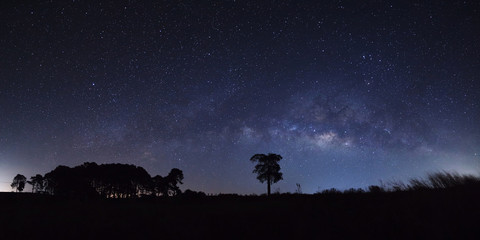 Panorama milky way and silhouette of tree at Khao Kho, Phetchabun, Thailand, Long exposure photograph.with grain